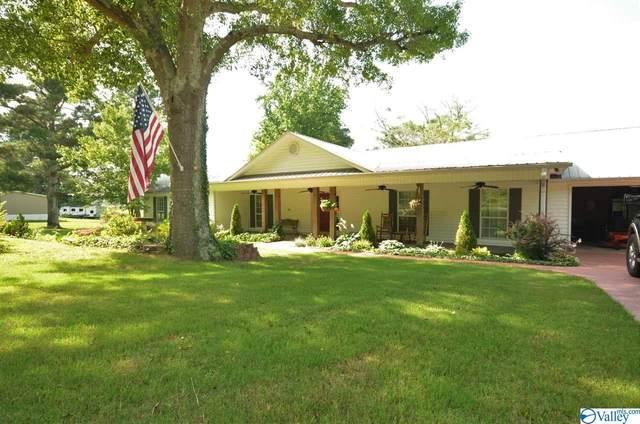 1041 County Road 535, Hanceville, AL 35077 (MLS #1147479) :: LocAL Realty
