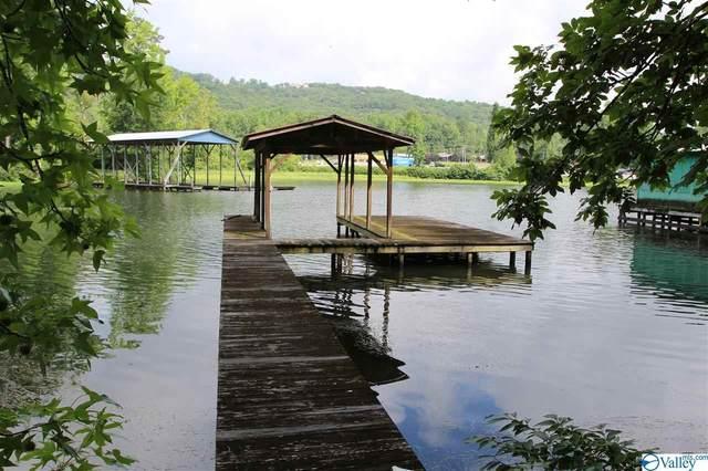 415 Pine Island Point, Scottsboro, AL 35769 (MLS #1147804) :: Amanda Howard Sotheby's International Realty