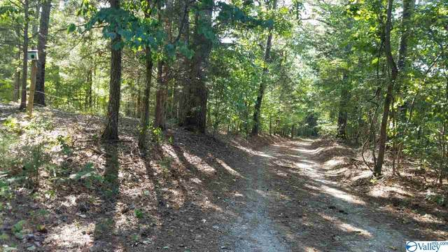 1928 County Road 203, Danville, AL 35619 (MLS #1147828) :: RE/MAX Distinctive | Lowrey Team