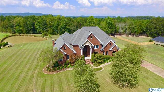 4380 Skyview Drive, Southside, AL 35907 (MLS #1148066) :: RE/MAX Unlimited