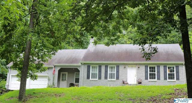 924 Jones Street, Guntersville, AL 35976 (MLS #1148068) :: Revolved Realty Madison