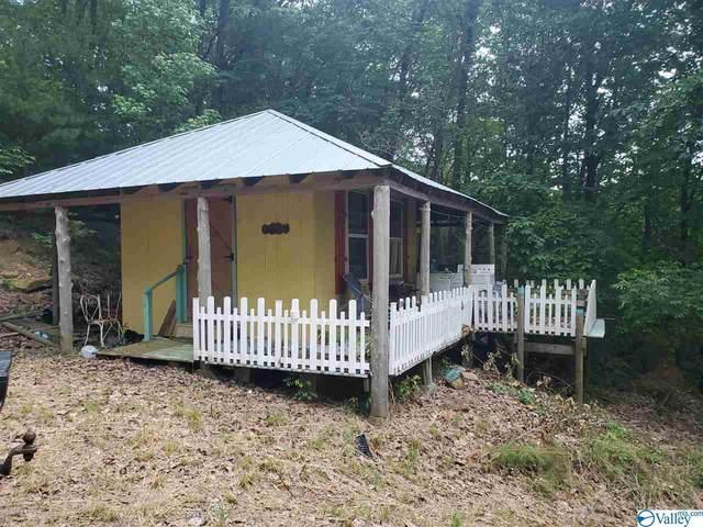214 County Road 130, Fort Payne, AL 35967 (MLS #1148124) :: Capstone Realty