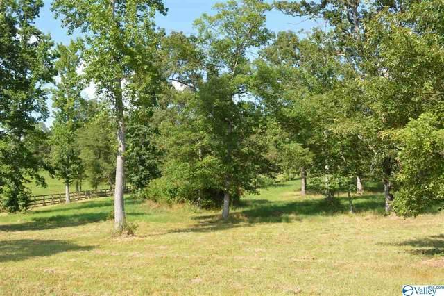 0 Deerfoot Drive, Stevenson, AL 35772 (MLS #1148144) :: MarMac Real Estate