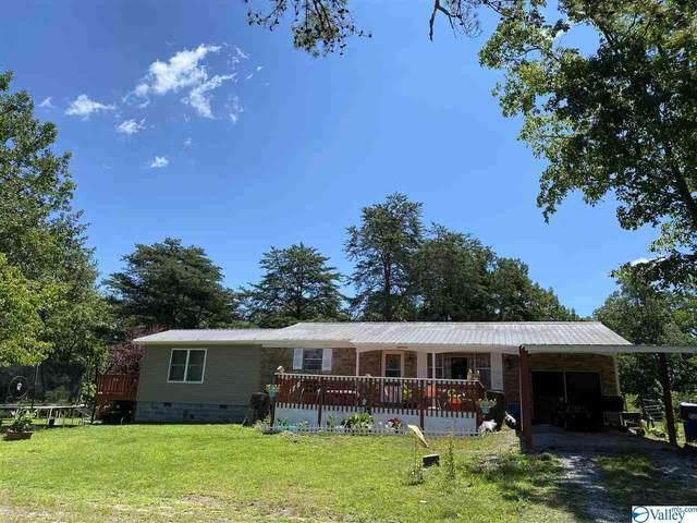 1151 County Road 120, Valley Head, AL 35989 (MLS #1148145) :: Capstone Realty