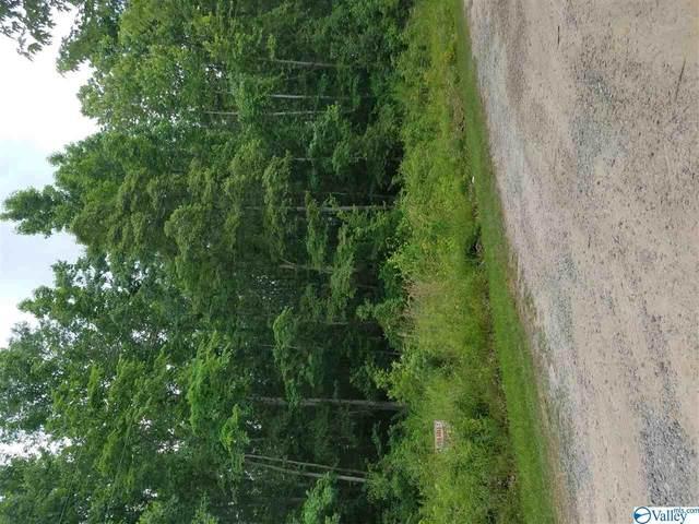 36 Spring Creek Campground, Centre, AL 35960 (MLS #1148185) :: Capstone Realty