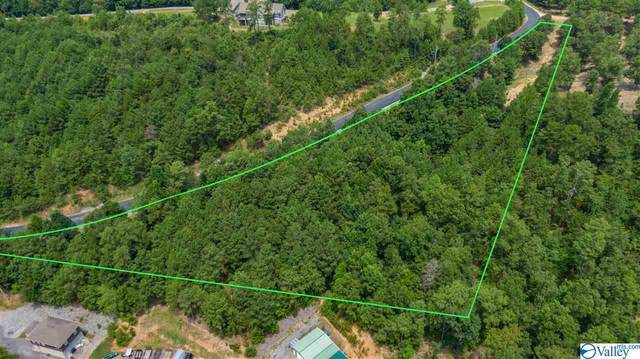 Lot 14 County Road 767, Cedar Bluff, AL 35959 (MLS #1148515) :: Southern Shade Realty