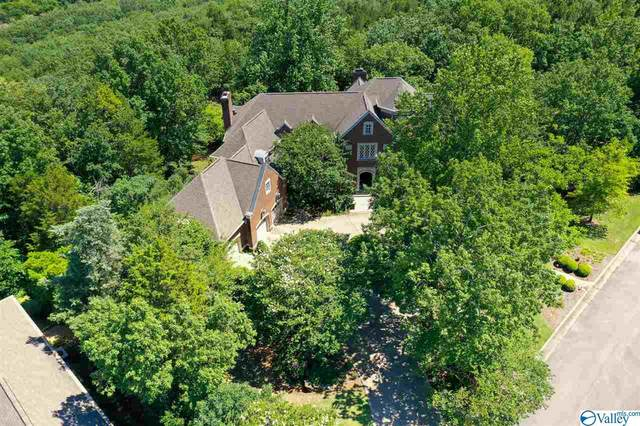 11009 Stone Mountain Drive, Huntsville, AL 35803 (MLS #1148676) :: MarMac Real Estate