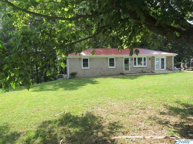 1997 Oak Grove Road, Goodspring, TN 38460 (MLS #1148774) :: The Pugh Group RE/MAX Alliance