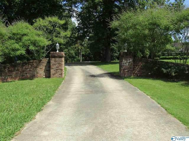 4528 County Road 23, Mount Hope, AL 35651 (MLS #1148852) :: MarMac Real Estate