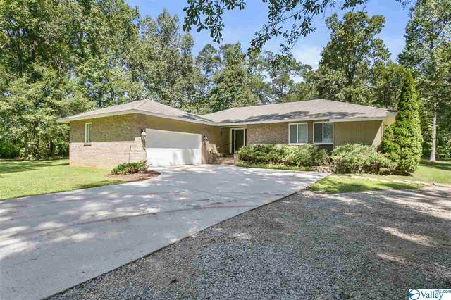 169 Oakview Road, Hazel Green, AL 35750 (MLS #1148874) :: RE/MAX Distinctive | Lowrey Team
