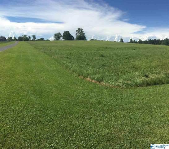 000 Gordon Terry Parkway, Trinity, AL 35673 (MLS #1149024) :: MarMac Real Estate