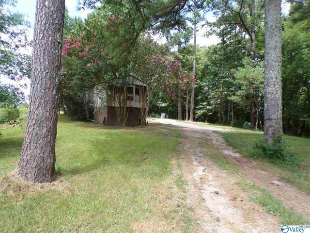 1033 County Road 227, Moulton, AL 35650 (MLS #1149374) :: MarMac Real Estate