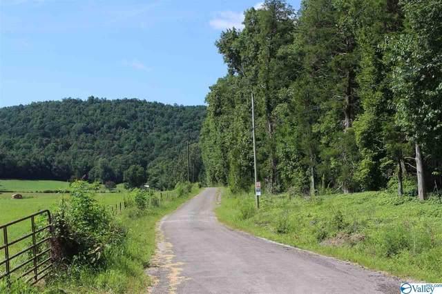 0000 Blue Springs Road, Somerville, AL 35670 (MLS #1149606) :: RE/MAX Distinctive | Lowrey Team