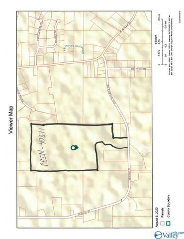 3900 Walnut Street, Albertville, AL 35950 (MLS #1149878) :: MarMac Real Estate