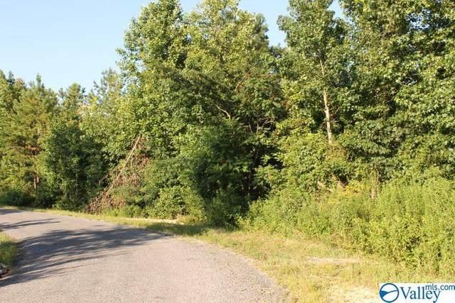 00 County Road 590, Sylvania, AL 35988 (MLS #1149885) :: MarMac Real Estate