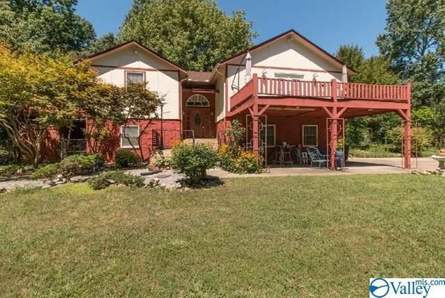 2376 County Road 127, Fort Payne, AL 35967 (MLS #1149905) :: MarMac Real Estate