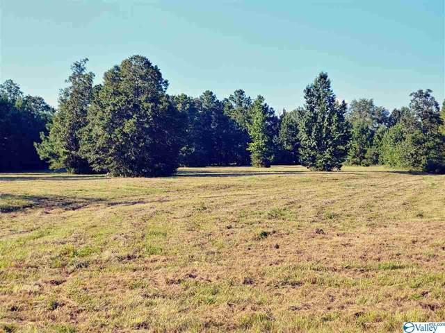 1215 Salem Road, Hartselle, AL 35640 (MLS #1150071) :: Legend Realty