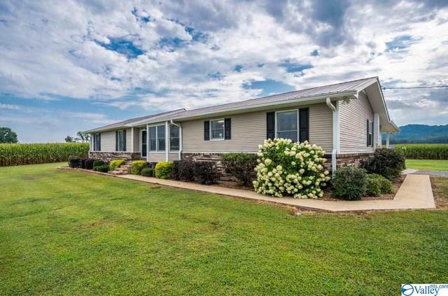 417 County Road 87, Collinsville, AL 35961 (MLS #1150259) :: Capstone Realty