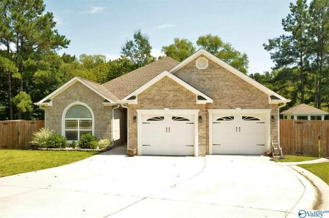 51 Saint Sebastian Drive, Cullman, AL 35057 (MLS #1150330) :: Amanda Howard Sotheby's International Realty