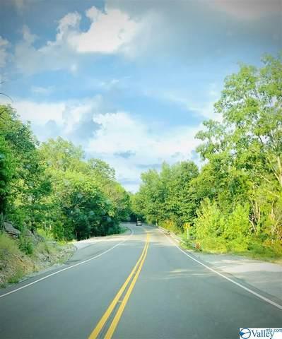726 West Point Road, Somerville, AL 35670 (MLS #1150435) :: Amanda Howard Sotheby's International Realty
