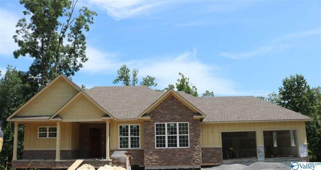 1067 Heritage Drive, Guntersville, AL 35976 (MLS #1150544) :: Coldwell Banker of the Valley