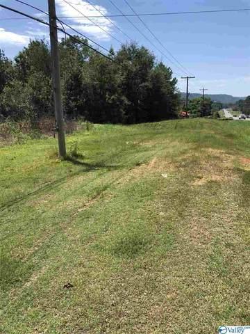 S Highway 79, Guntersville, AL 35976 (MLS #1150778) :: Southern Shade Realty