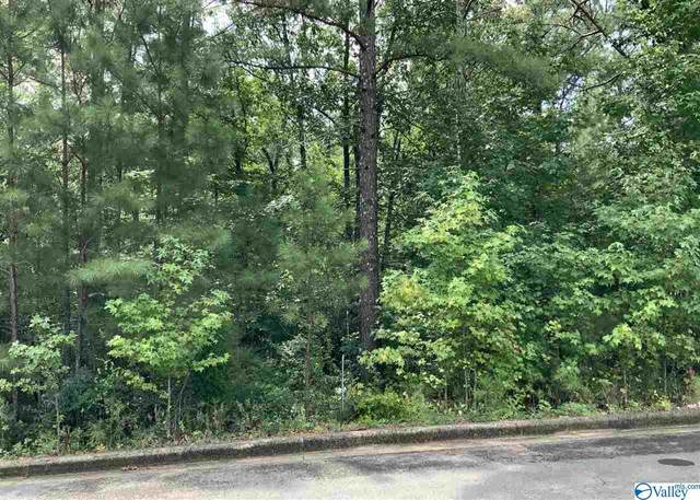 2 Lots Cade Circle 2 Lots, Leesburg, AL 35983 (MLS #1150835) :: Legend Realty