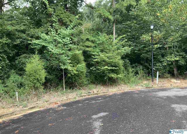 2Lots Ridge Road 2Lots, Leesburg, AL 35983 (MLS #1150836) :: Legend Realty