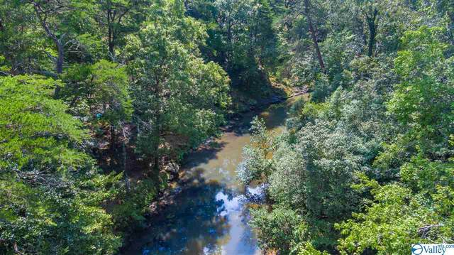 49 Road 9006, Mentone, AL 35984 (MLS #1150900) :: Revolved Realty Madison