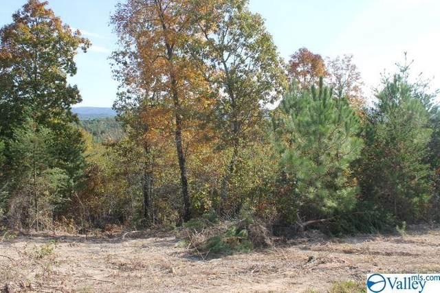 Lot 12 Hillside Drive, Fort Payne, AL 35967 (MLS #1150954) :: The Pugh Group RE/MAX Alliance