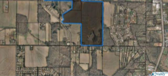 585 Bobo Section Road, Hazel Green, AL 35750 (MLS #1151589) :: RE/MAX Distinctive | Lowrey Team