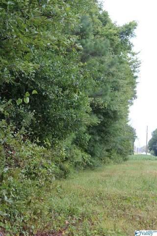 1239 Old Railroad Bed Road, Taft, TN 38488 (MLS #1151897) :: Rebecca Lowrey Group