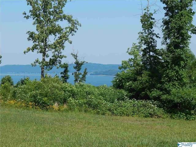 159 Legendary Drive, Guntersville, AL 35976 (MLS #1152051) :: Revolved Realty Madison
