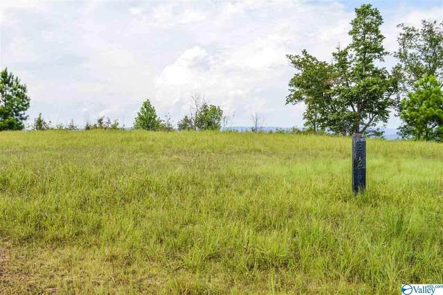 Lot 202 County Road 767, Cedar Bluff, AL 35959 (MLS #1152054) :: Southern Shade Realty