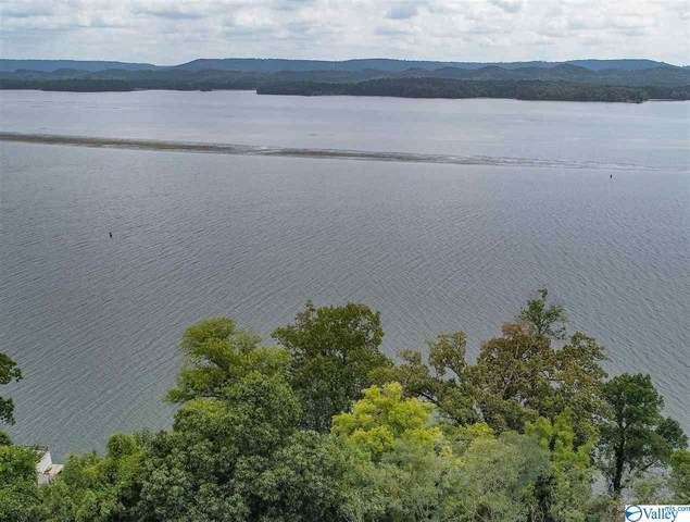 850 Pine Island Point, Scottsboro, AL 35769 (MLS #1152071) :: Revolved Realty Madison