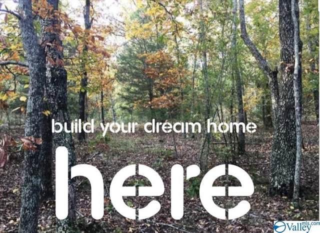 Lot 29 Woodfern Drive, Scottsboro, AL 35768 (MLS #1152595) :: LocAL Realty