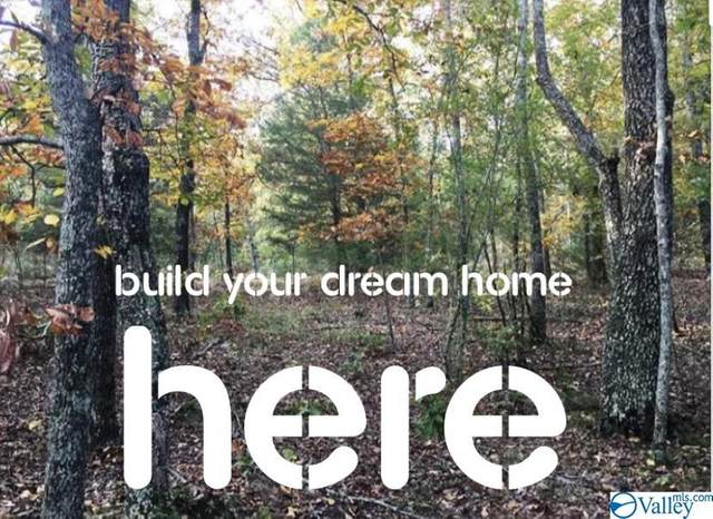 Lot 33 Woodfern Drive, Scottsboro, AL 35768 (MLS #1152610) :: Revolved Realty Madison