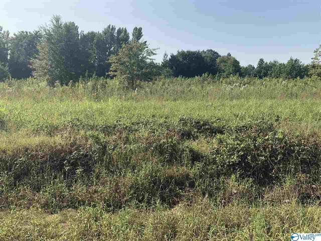 lot 2 County Road 170, Trinity, AL 35673 (MLS #1152678) :: The Pugh Group RE/MAX Alliance