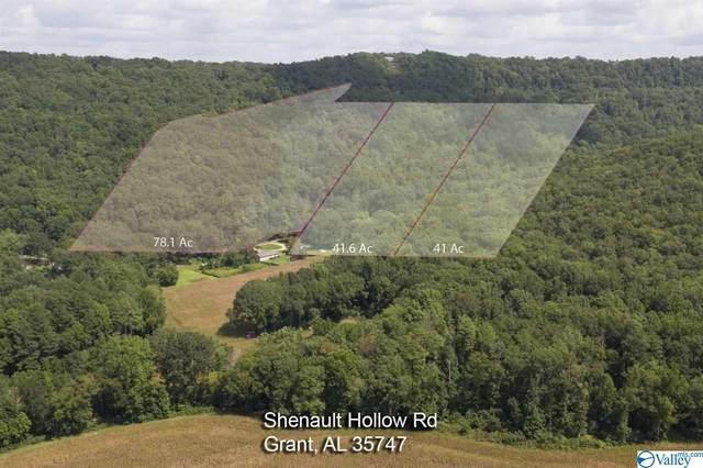 0 Shinault Hollow Road, Grant, AL 35747 (MLS #1153066) :: Legend Realty