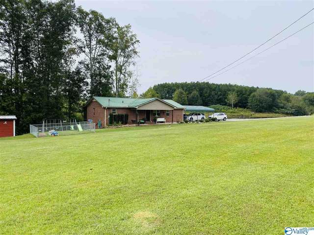 2284 Old Oneonta Road, Horton, AL 35980 (MLS #1153362) :: The Pugh Group RE/MAX Alliance