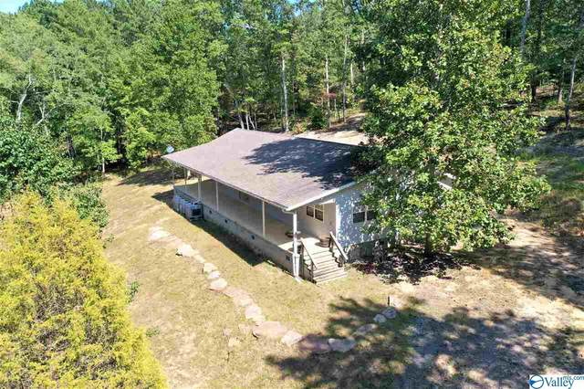 13611 Lay Springs Road, Collinsville, AL 35961 (MLS #1153424) :: The Pugh Group RE/MAX Alliance