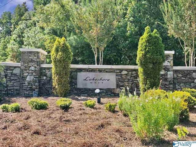 Lot 115 County Road 184, Crane Hill, AL 35053 (MLS #1153462) :: Legend Realty