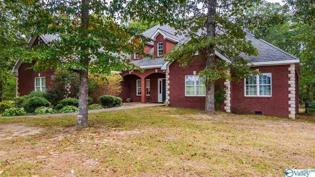744 County Road 647, Mentone, AL 35984 (MLS #1153481) :: Amanda Howard Sotheby's International Realty