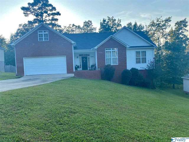 5300 Fred Drive, Southside, AL 35907 (MLS #1153569) :: Revolved Realty Madison