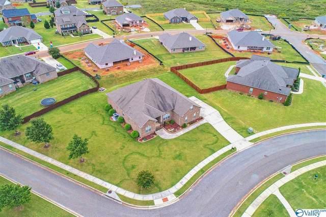 29565 Brafferton Circle, Harvest, AL 35749 (MLS #1153610) :: LocAL Realty