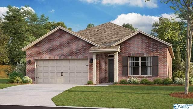 215 Lakewater Circle, Meridianville, AL 35759 (MLS #1153636) :: MarMac Real Estate