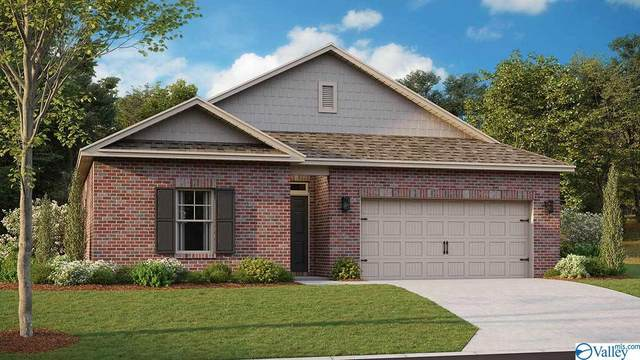 203 Lakewater Circle, Meridianville, AL 35759 (MLS #1153638) :: MarMac Real Estate
