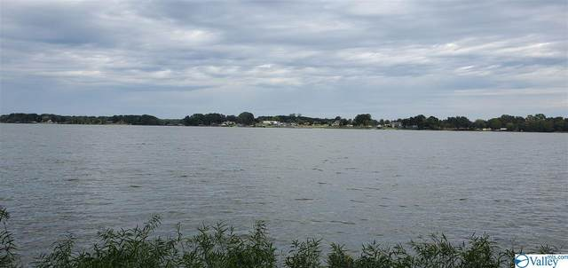 3 Sandy Shores, Centre, AL 35960 (MLS #1153680) :: Legend Realty