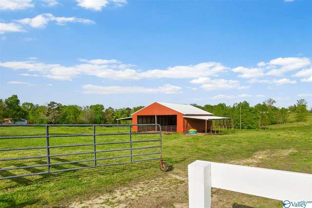 0 County Road 730, Henager, AL 35978 (MLS #1153842) :: Rebecca Lowrey Group