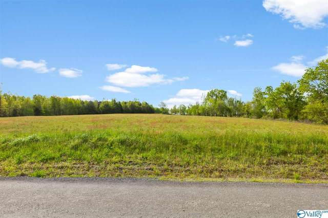 0 County Road 241, Henagar, AL 35978 (MLS #1153843) :: Rebecca Lowrey Group